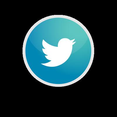 Social Seguici su Twitter